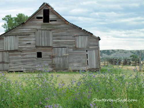 Old Barn West of Billings