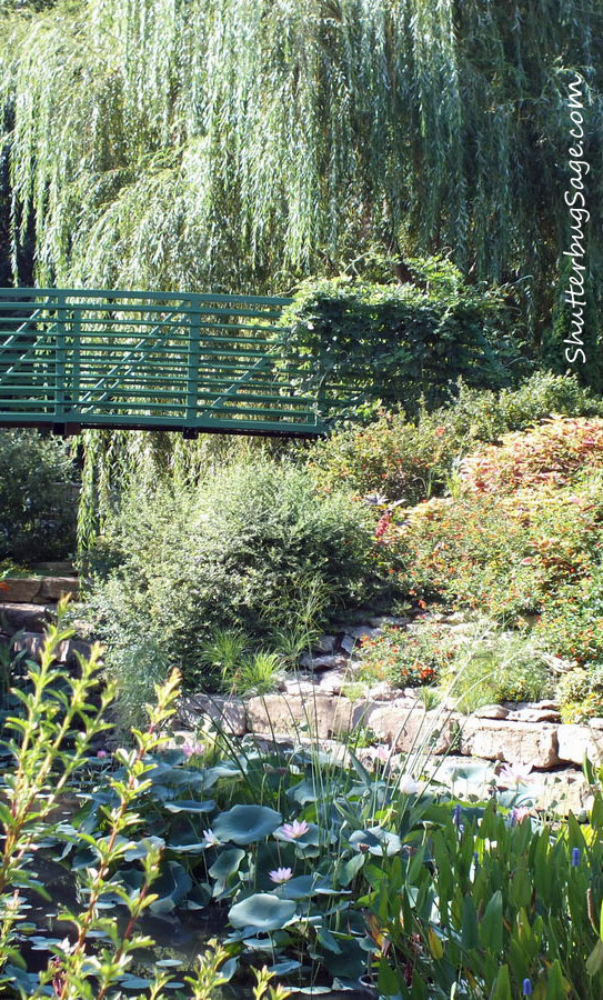 Monet Garden Photo #1. View Over The Lily Pond Toward The Japanese Foot  Bridge.