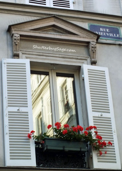 Geraniums in a window box in Paris, France