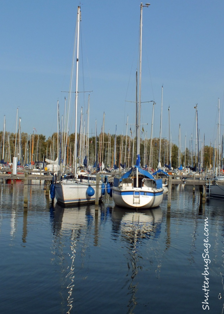 Marina in Afternoon 4