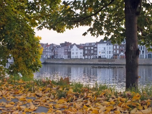 Autumn along the Maas (Meuse) River in Maastricht, The Netherlands