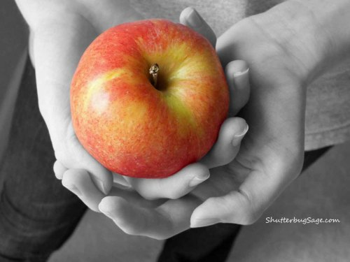 Apple 2_edited-1