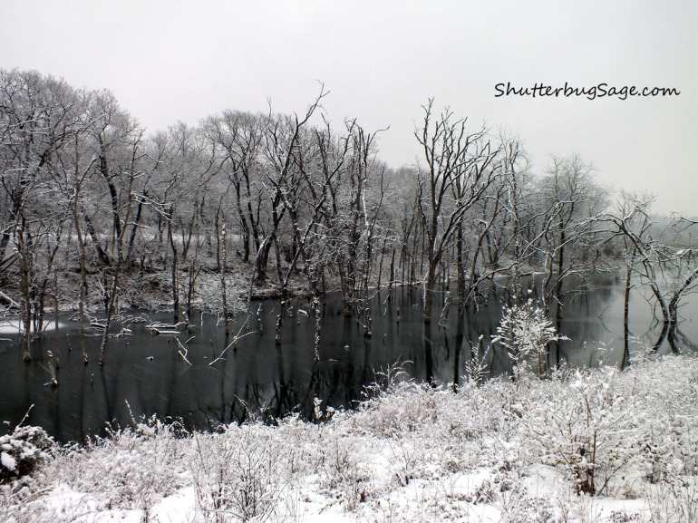 Lake Lenexa in Snow 2_edited-1