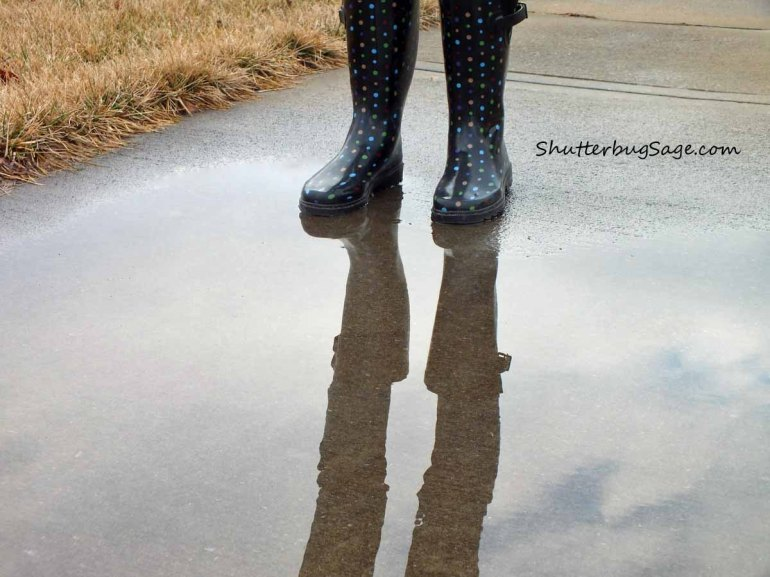 Puddle_edited-1