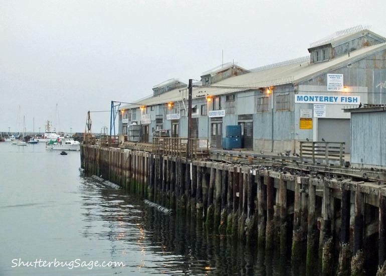 Wharf 1_edited-1