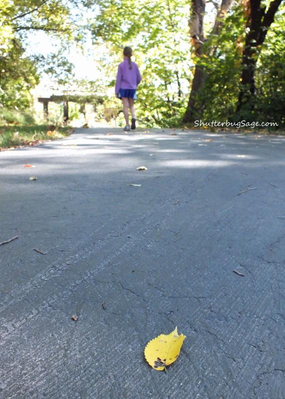 Trail Walk_edited-1