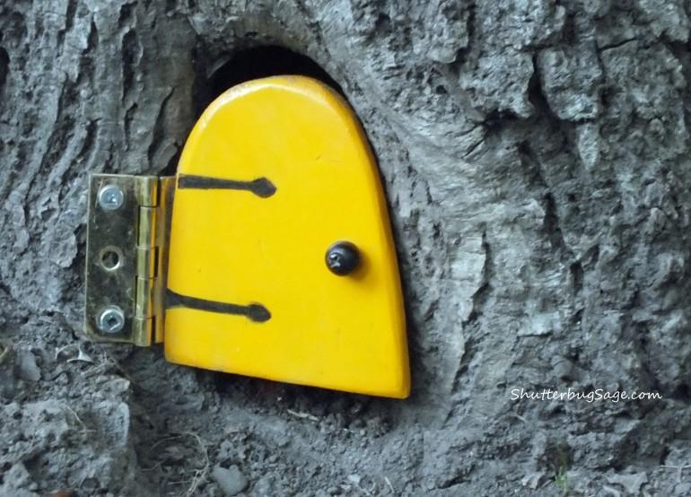 Yellow Door 1_edited-1