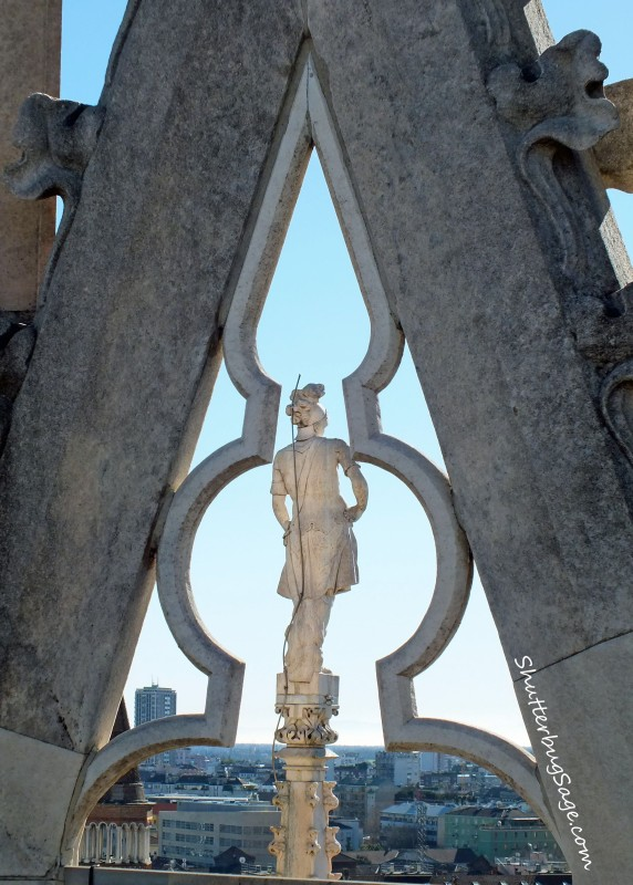 Duomo Roof 4 copy