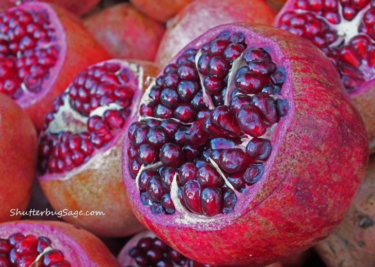 Pomegranate copy
