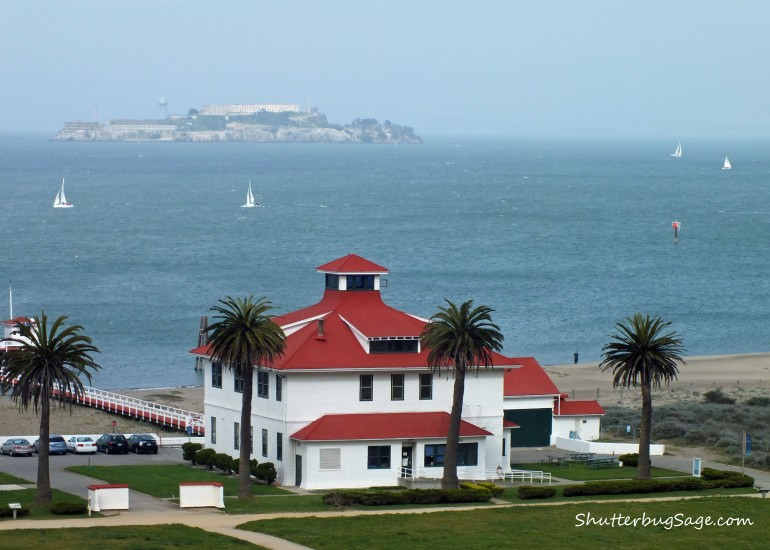 Alcatraz from the Presidio copy