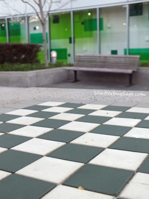 Checkerboard in Yerba Buena Park copy