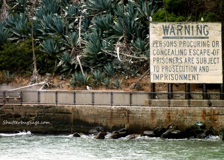 Alcatraz Warning Sign_edited-1