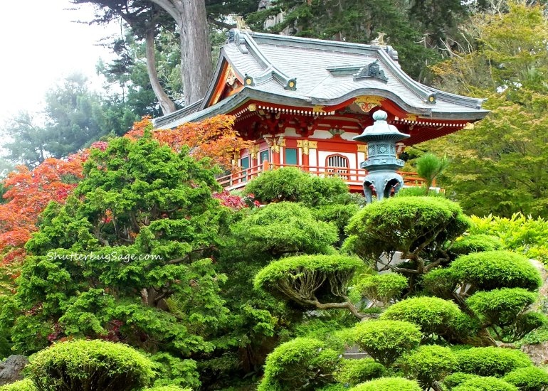 Pagoda 1_edited-1