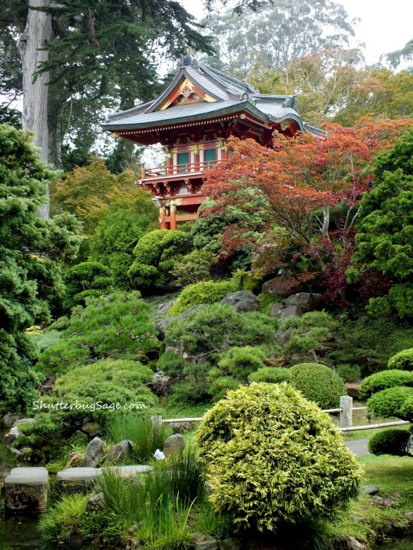 Pagoda 2_edited-1