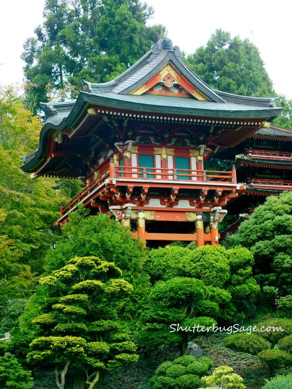 Pagoda 3_edited-1