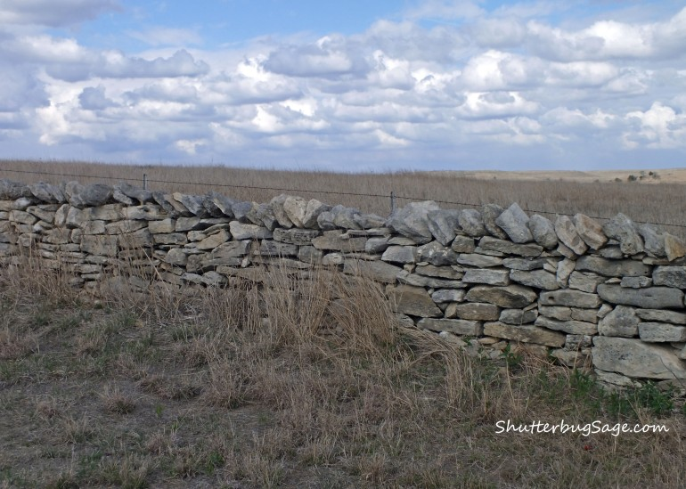 Native Stone Fence 2_edited-1