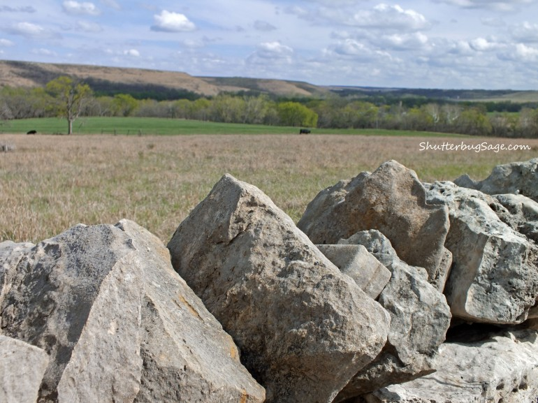 Native Stone Fence 4_edited-1