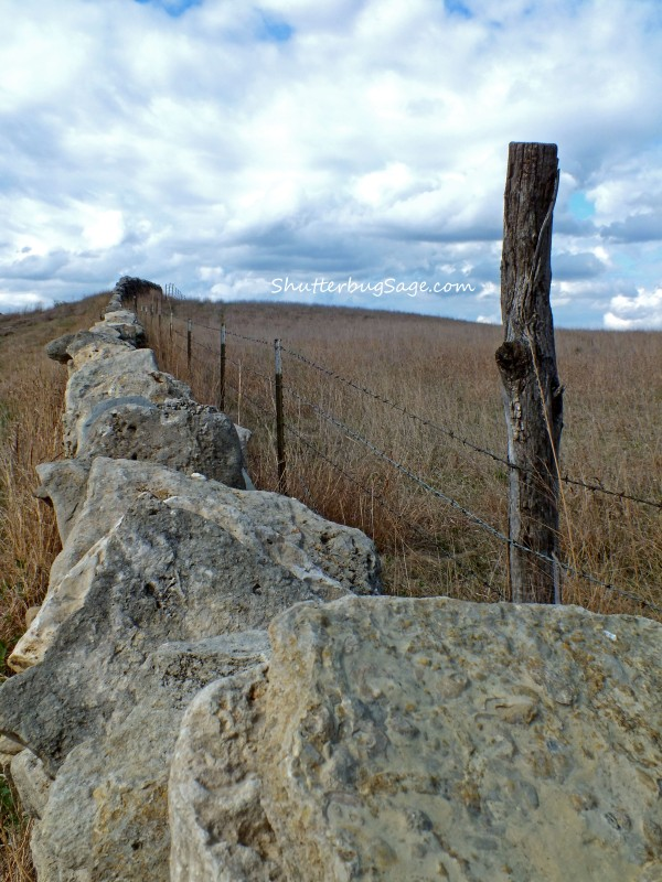 Native Stone Fence 5_edited-1
