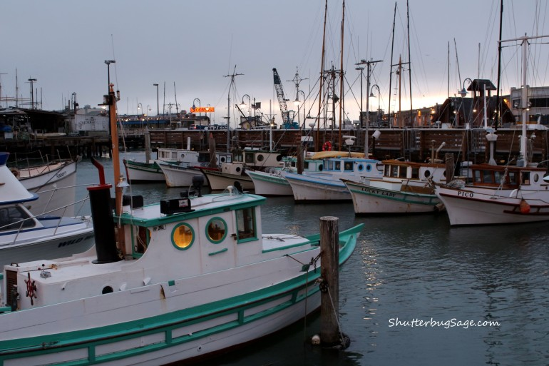 Boats in Fishermans Wharf_edited-1