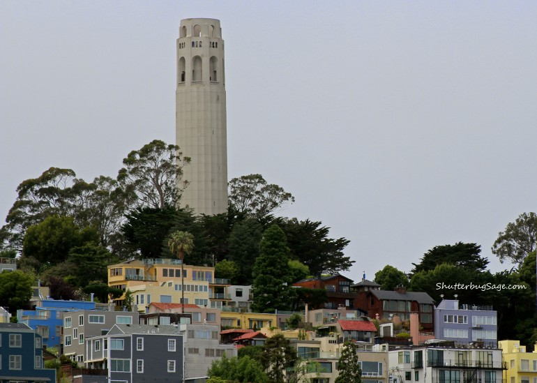 Coit Tower 1_edited-1b