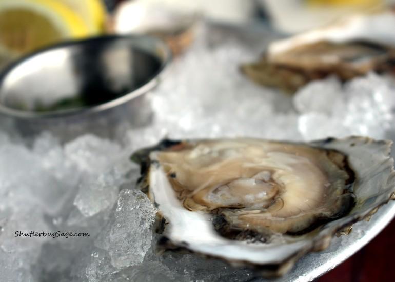 Hog Island Oysters 2_edited-1