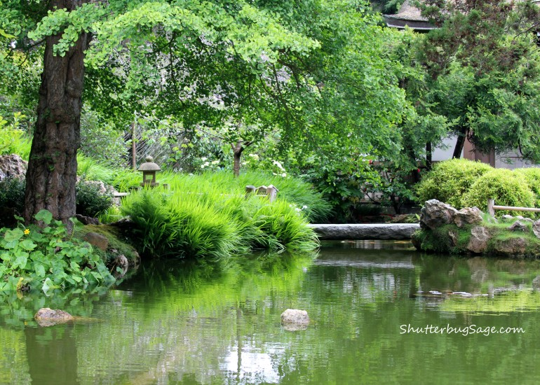 Japanese Tea Garden 3_edited-1