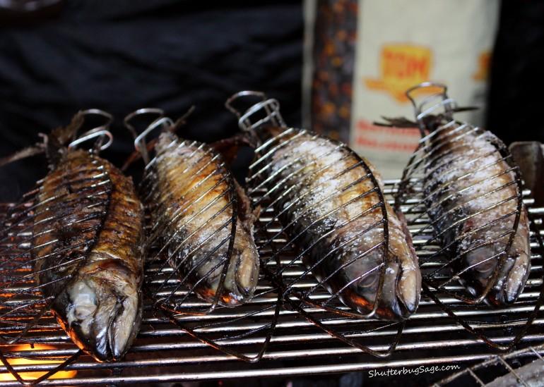 Fish at Market_edited-1