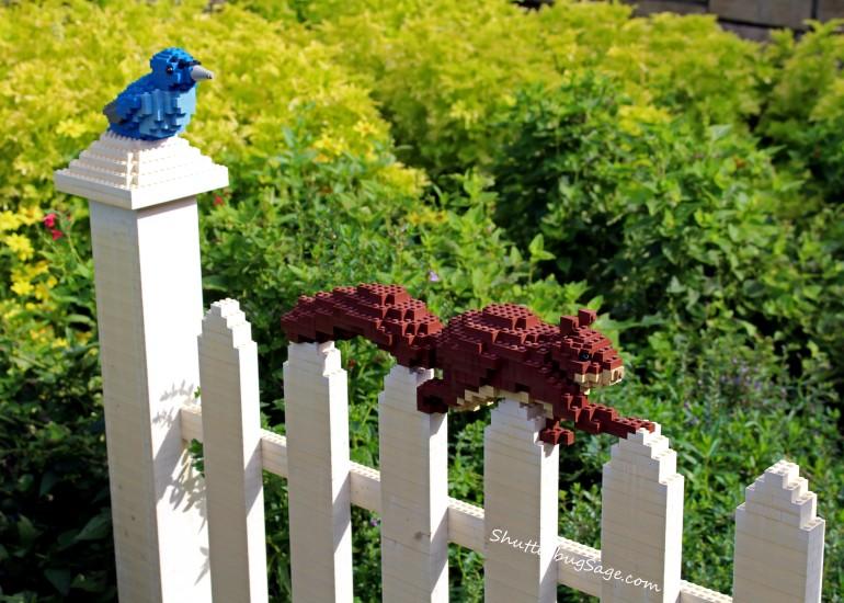 Lego - Squirrel and Bird_edited-1