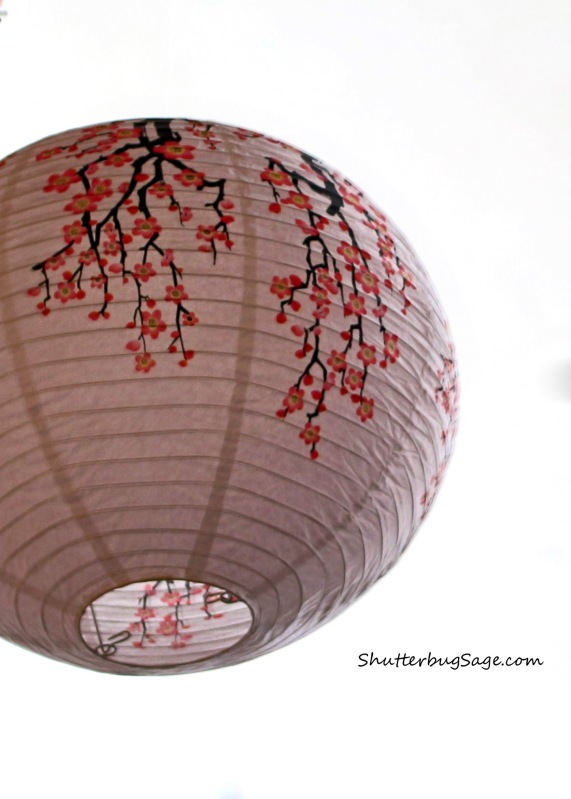 Paper Lantern_edited-1