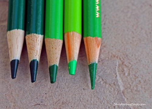 Green Colored Pencils_edited-1