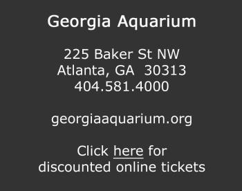 Details for Visiting the Georgia Aquarium