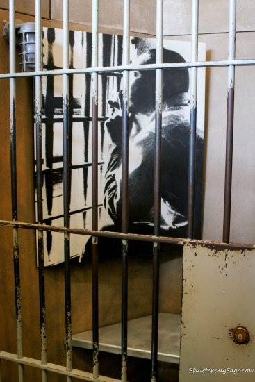 Martin Luther King Jr was arrested in Birmingham, Alabama for peacefully protesting segregation