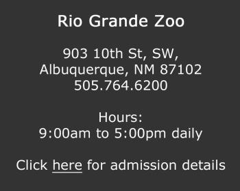 Rio Grande Zoo copy
