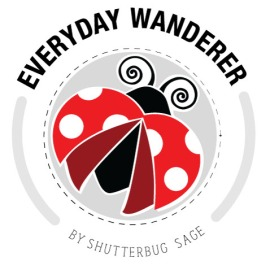Everyday Wanderer by Shutterbug Sage